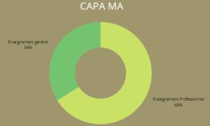répartition enseignement CAPA